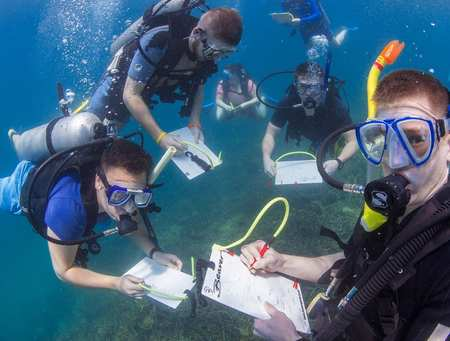 International Wildlife Biology students on Borneo field trip