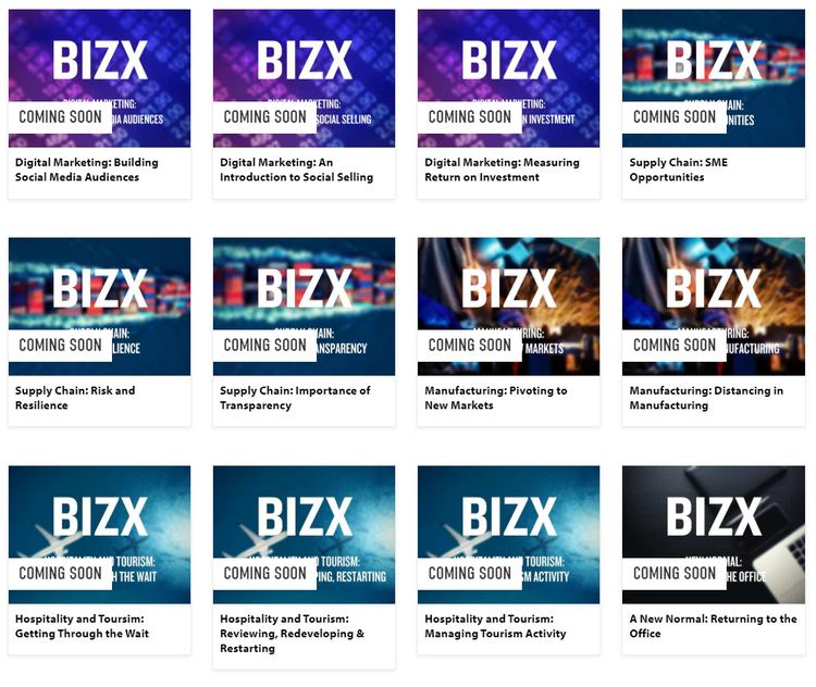 BizX overview