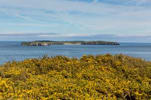 Caldey Island.jpg