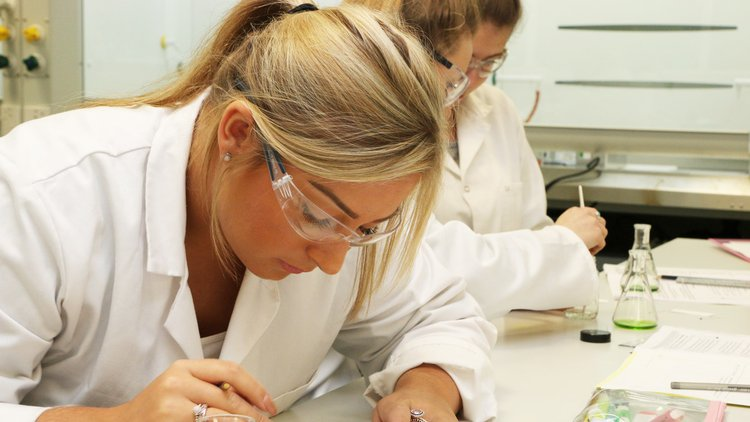 Chemistry_lecture_October_2015_Analysing the thin-layer chromatography plates of our spinach pigment samples. Calculating how far the pigment has travelled on the plate – the retardation values. This helps us identify the different pigments present.jpg