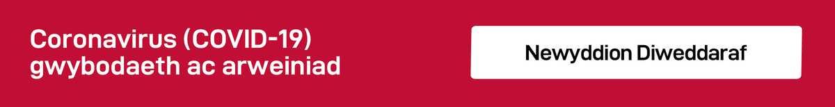 banner Cymraeg