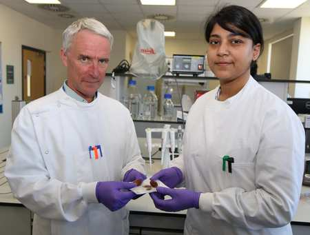 Palm date seeds project. Professor Denis Murphy with PhD research student Farzana Rahman, who is part of the team working on the project. Neil Gibson.