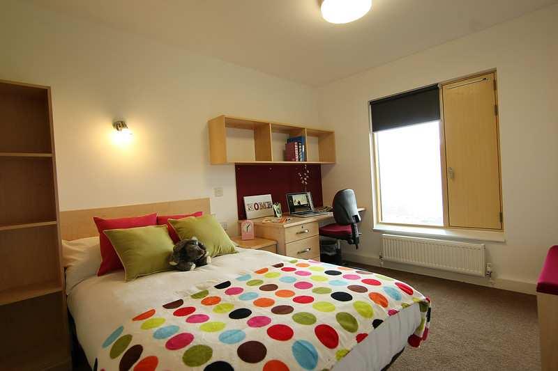 Mountain Halls Premium Room