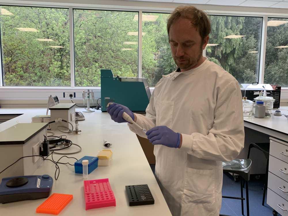Coronavirus Diagnostic Test - Jeroen Nieuwland
