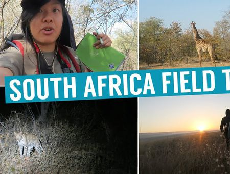 Jia Wei - Africa Field Trip International Wildlife Biology degree