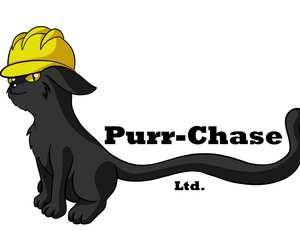 PurrChase - Graduate Entrepreneur