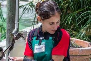 Rhiannon Gill,  Bird Rehabilitator,  SANCCOB profile