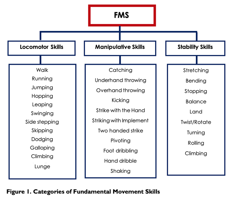 Categories of Fundamental Movement Skills, Sports Blog
