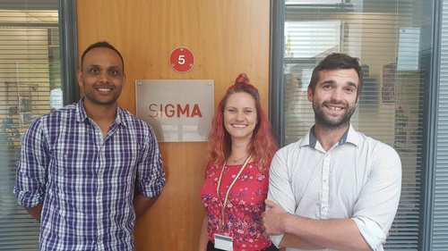 Sigma Project Management