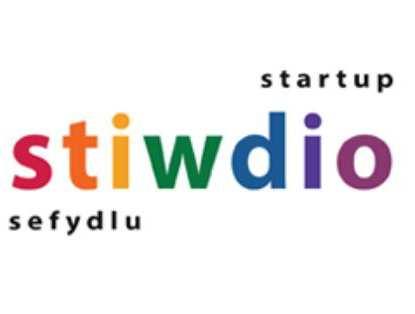 Stiwdio Logo.JPG