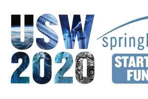 Springboard Startup Fund 2020
