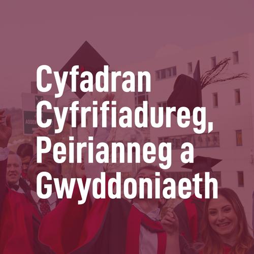 Virtual Grad Celebrations - FCES Cymraeg