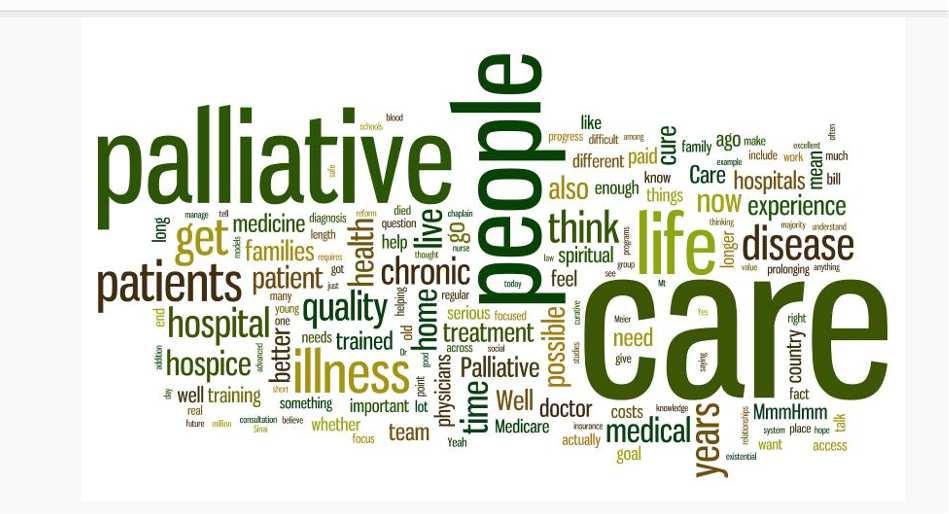 palliative care.png