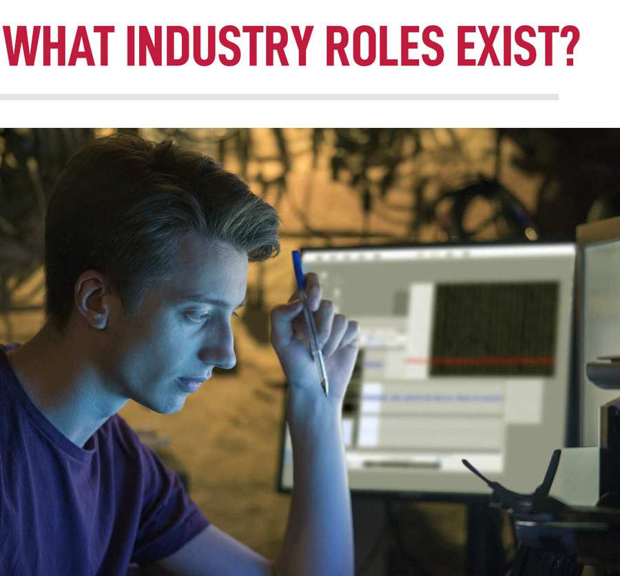 What Industry Roles Exist For Data Science