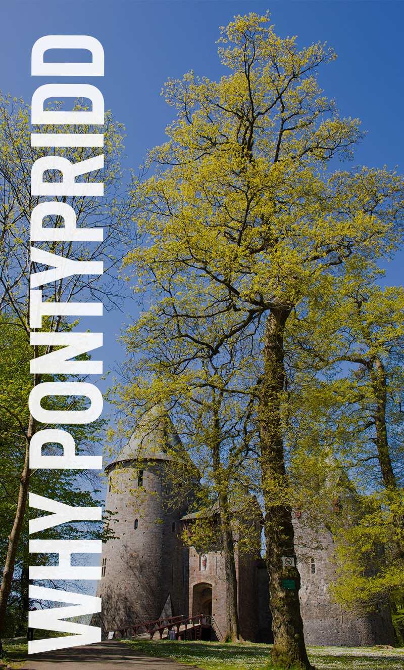 why pontypridd banner.png